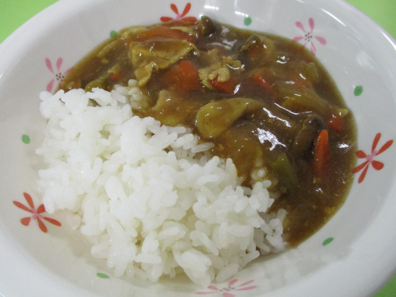 HP和風カレー.png